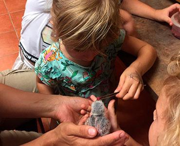niña alimentando ave